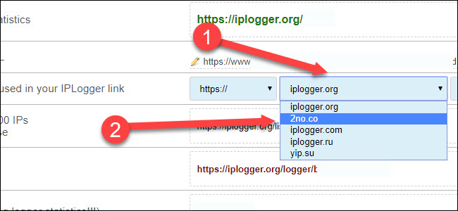 IP logger domain dropdown, with arrow pointing to 2no.co
